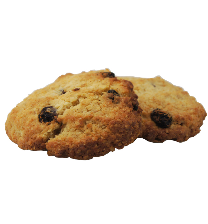 Biscuit coco avoine et raisin